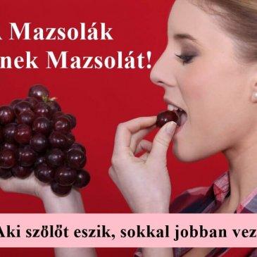 A Mazsolák egyenek mazsolát! Avagy, aki szőlőt eszik, sokkal jobban vezet!