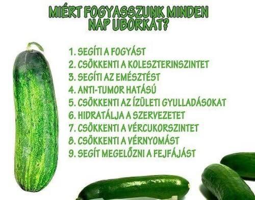 az uborka fogyás egészségügyi előnyei)