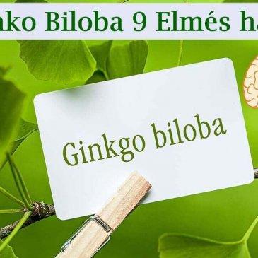 A Ginko Biloba 9 Elmés hatása